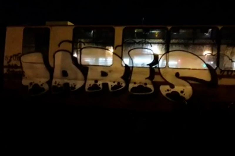 Росгвардия поймала вандалов, изуродовавших трамвай рисунками в Санкт-Петербурге